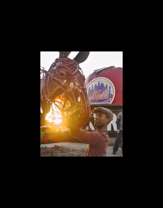 Hot Shot - War Horse at Mets Game - 9/12