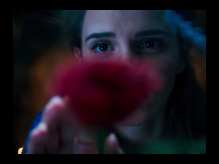 WI - Beauty and the Beast - Live action - 5/16
